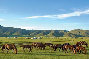 vignette Kazakhstan steppes mongoles